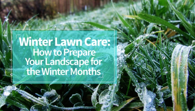 winter-lawn-care-how-to-prepare-your-landscape-for-the-winter-months